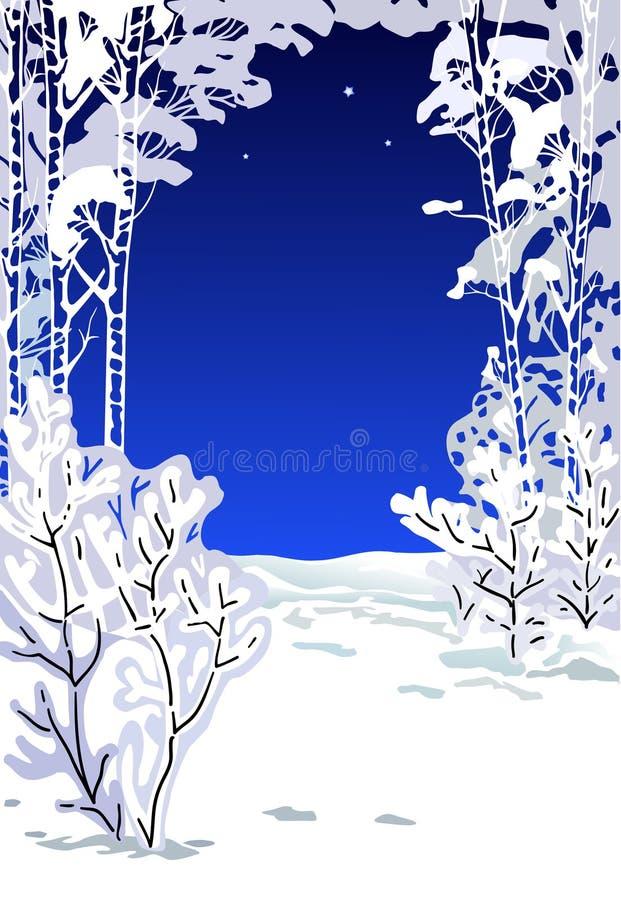 Árboles cubiertos con una nieve en la noche foto de archivo