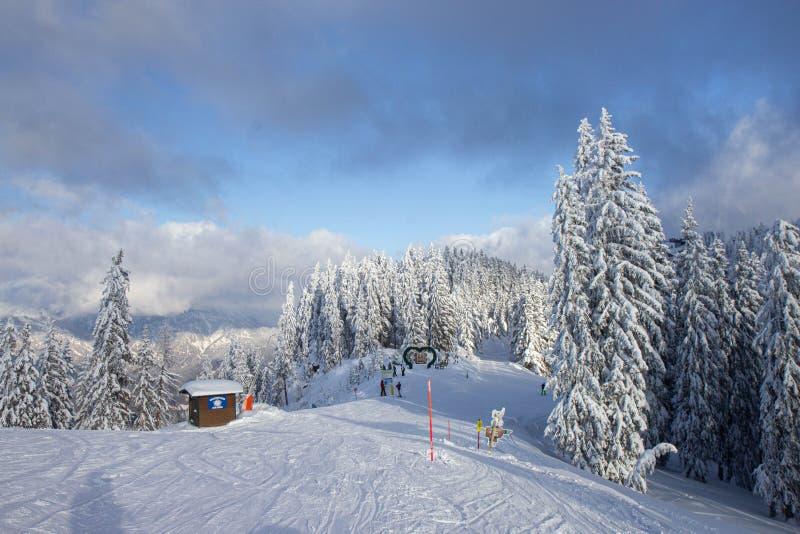 árboles cubiertos de nieve en las pistas de la estación de esquí de Schladming foto de archivo