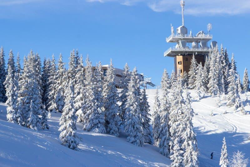 árboles cubiertos de nieve en las pistas de la estación de esquí de Schladming foto de archivo libre de regalías