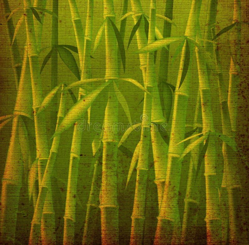Árboles de bambú stock de ilustración
