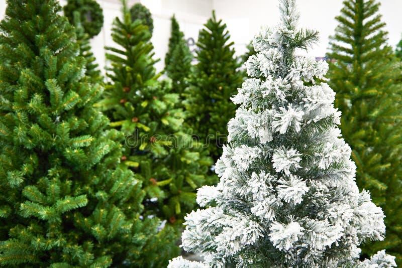 Árboles de navidad artificiales decorativos en tienda fotografía de archivo