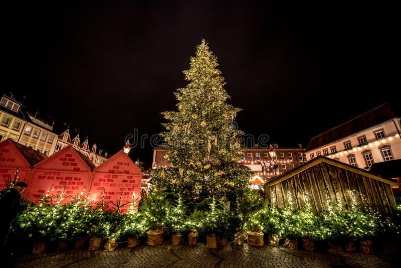 Árboles de navidad en los mercados alemanes de la Navidad fotografía de archivo libre de regalías
