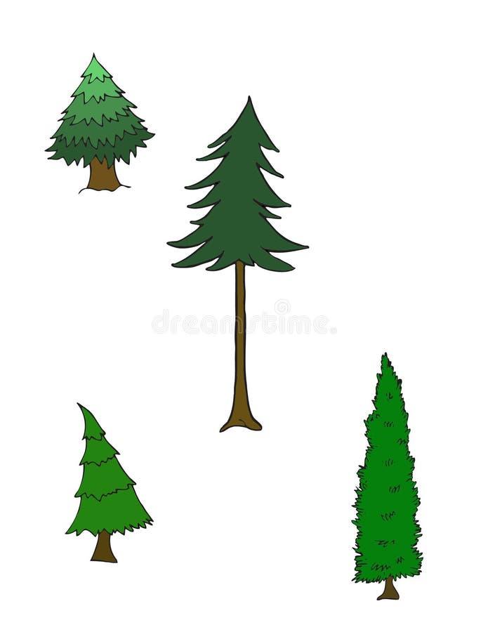 4 árboles de pino de diversas especies fotos de archivo