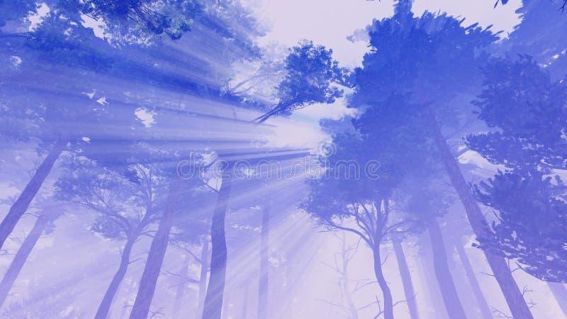 Árboles de pino que toman el sol en luz del sol ilustración del vector