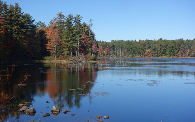 Árboles del otoño reflejados en agua del lago imagen de archivo