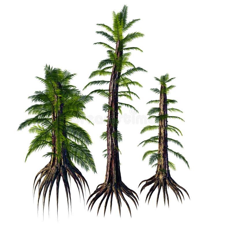 Árboles del SP de Tempskya stock de ilustración