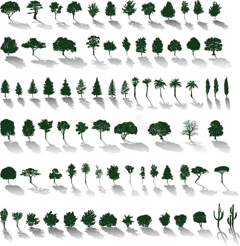 Árboles del vector con las sombras ilustración del vector