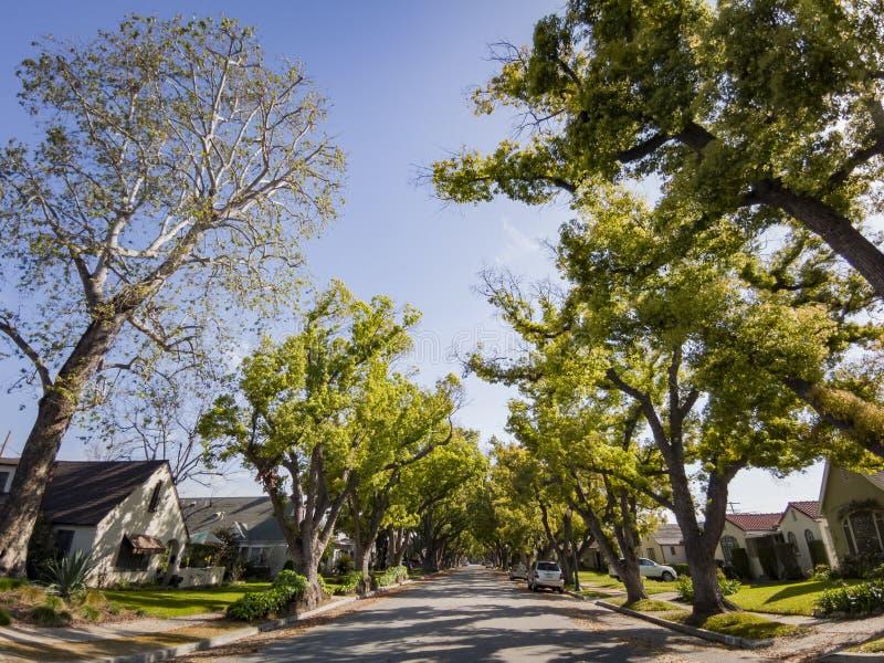 Árboles, edificio, coche de San Gabriel urbano fotos de archivo libres de regalías