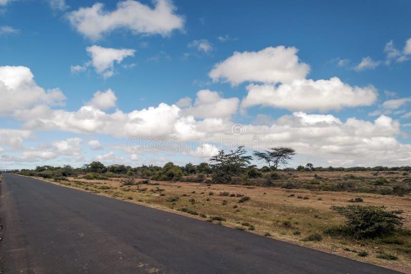 Download Árboles En La Sabana Africana Imagen de archivo - Imagen de verde, horizontal: 42438125