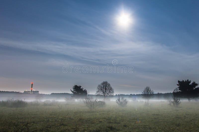 Árboles en niebla debajo de la Luna Llena imagen de archivo