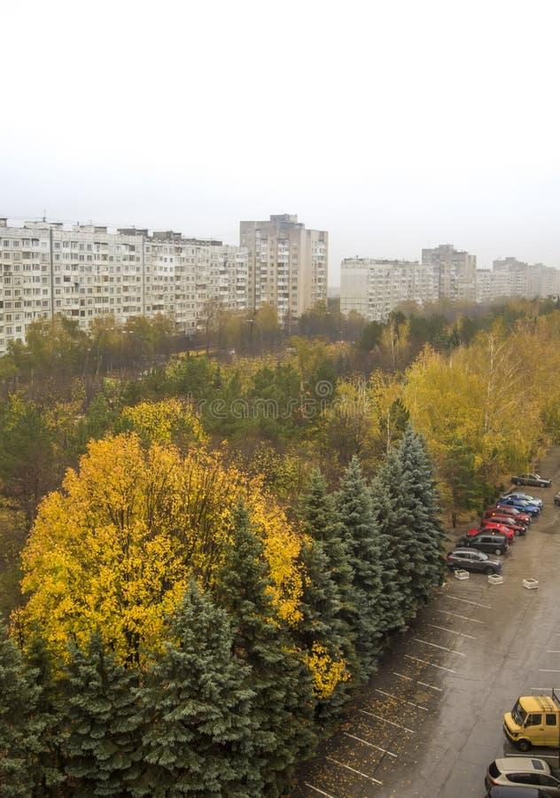 Árboles hermosos: Otoño en la ciudad fotos de archivo