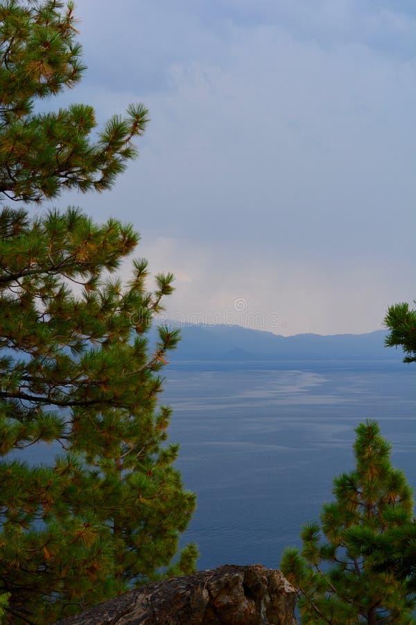 Árboles imperecederos en el primero plano del lago y de montañas fotos de archivo