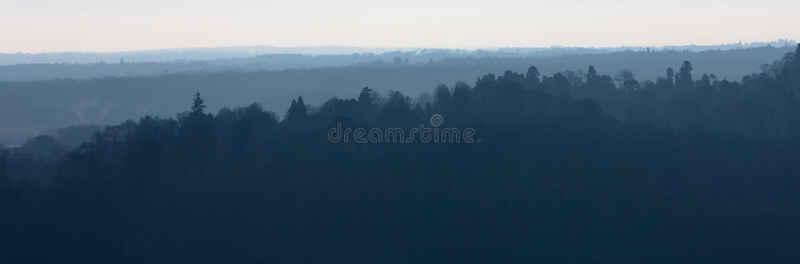 Árboles nebulosos en el horizonte fotos de archivo