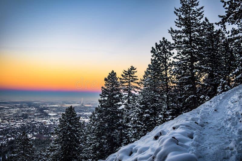 Árboles Nevado en puesta del sol en Boulder, Colorado fotos de archivo