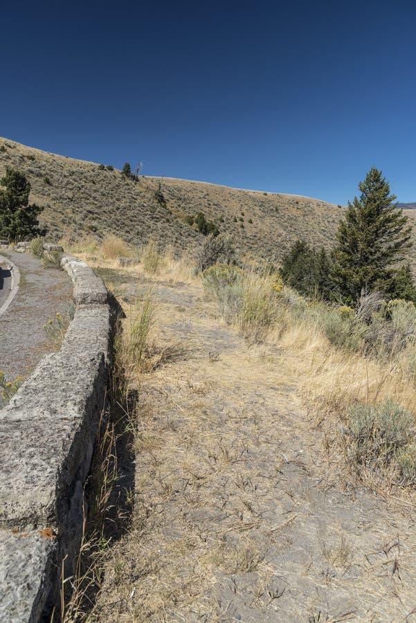 Árboles, pared e hierba en un camino de la entrada a Mammoth Hot Springs Yellowstone foto de archivo