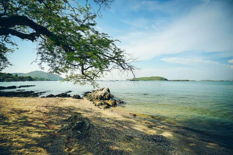 Árboles, playas cerca del puente de Atsadang, marca de tierra en Koh Chang, Tailandia imagenes de archivo