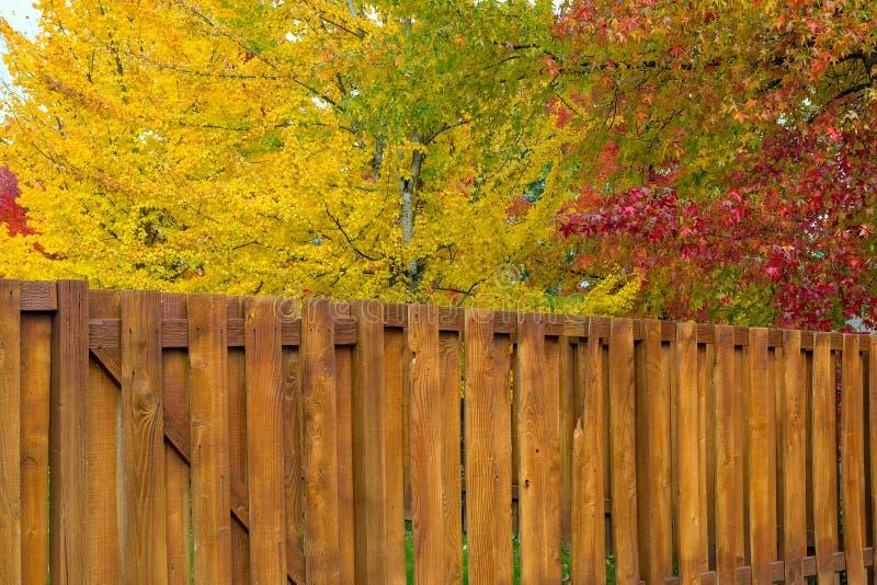 Árboles por la cerca de madera del patio trasero en colores de la caída imagen de archivo libre de regalías