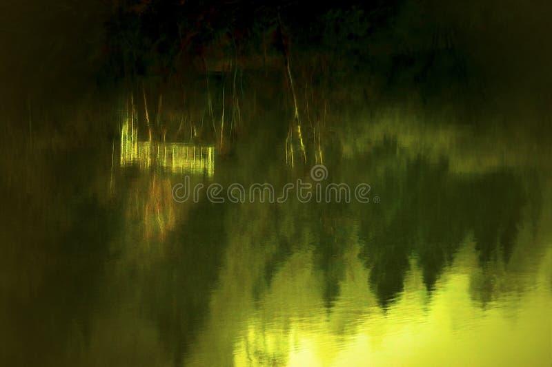 Árboles reflectores del río de Cowlitz del banco imagen de archivo libre de regalías