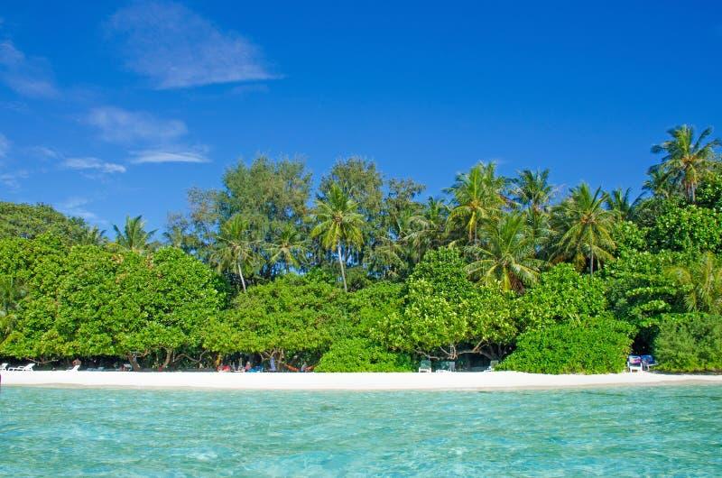 Árboles tropicales del paisaje contra la perspectiva del agua de la turquesa del océano imagen de archivo