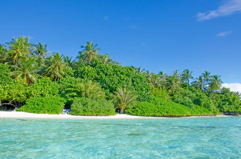 Árboles tropicales del paisaje contra la perspectiva del agua de la turquesa del océano fotografía de archivo