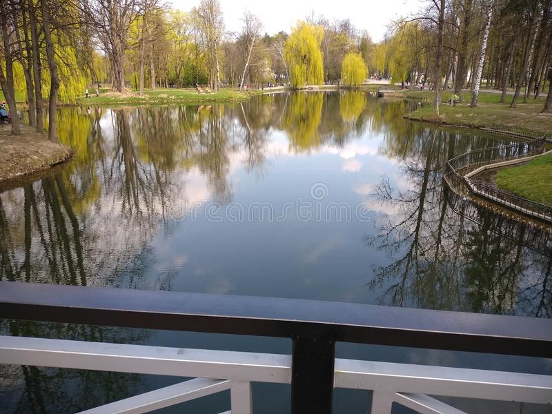 ?rboles verdes y cielo azul en parque de la ciudad Ivano-Frankivsk, Ucrania Resorte temprano fotos de archivo
