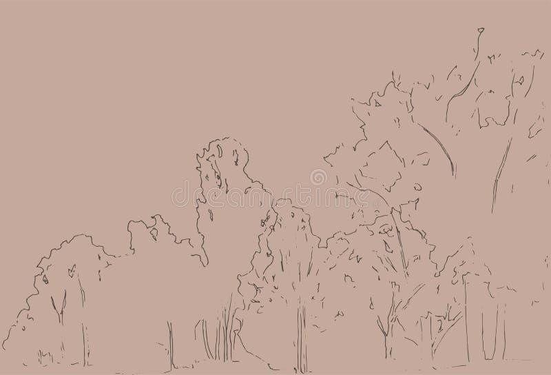 Árboles y bosquejo de los arbustos Dibujo linear del paisaje Ilustración drenada mano Bosque en el fondo blanco Línea negra diseñ stock de ilustración