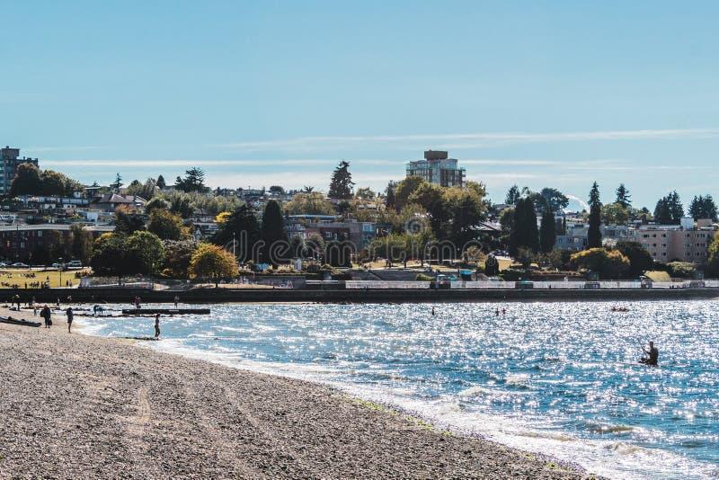 Árboles y casas en la playa de Kitsilano en Vancouver, Canadá imágenes de archivo libres de regalías