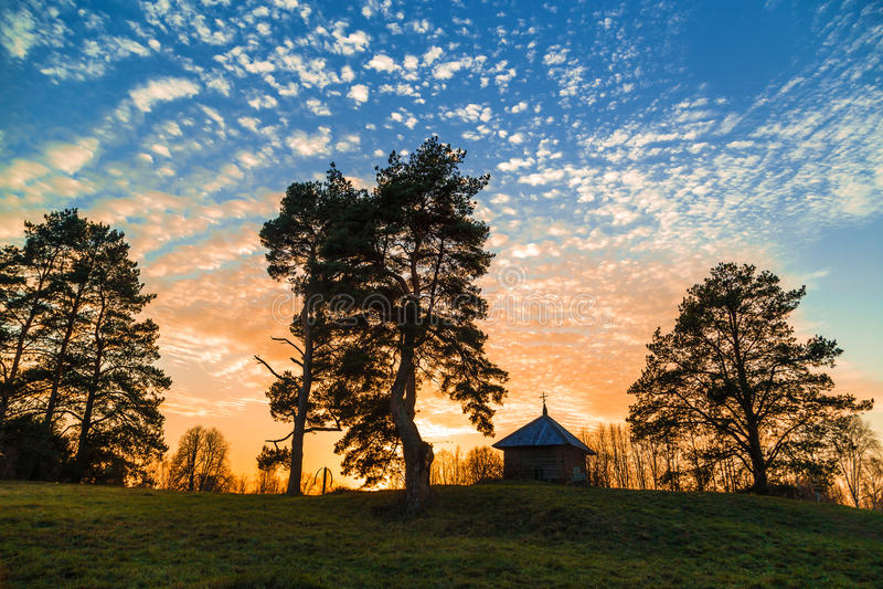 Árboles y cielo con las nubes imagen de archivo libre de regalías
