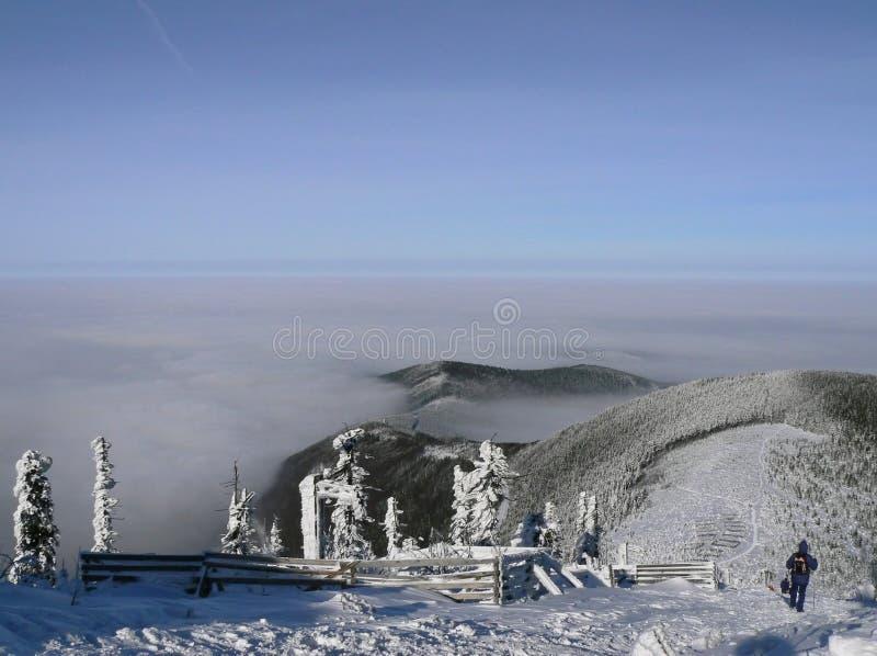 Árboles y colinas del invierno cubiertos por la nieve fotos de archivo