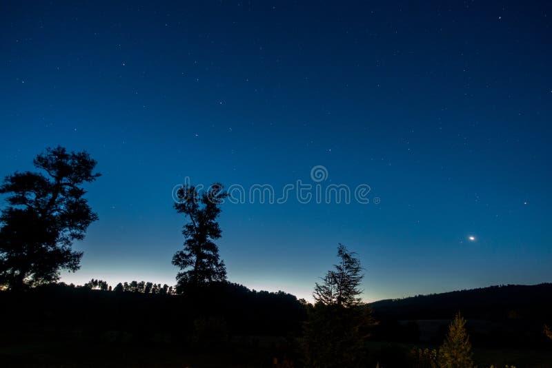 Árboles y estrellas después de la puesta del sol imagenes de archivo