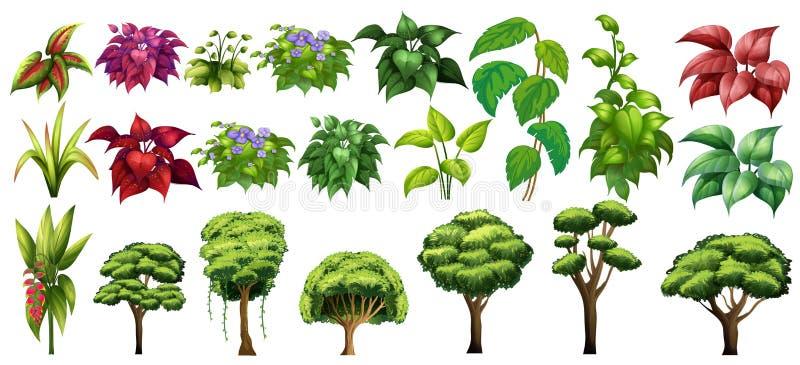Árboles y flores ilustración del vector
