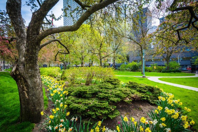 Árboles y jardines fuera de Osgoode Pasillo, en Toronto, Ontario fotos de archivo