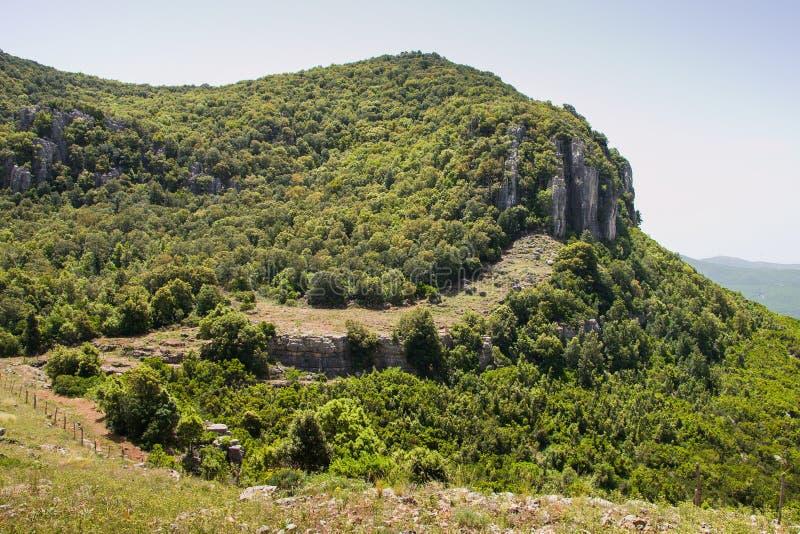 Árboles y montaña del verde de Cerdeña imagenes de archivo