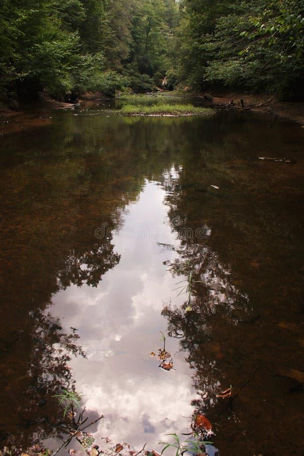 Árboles y nubes reflectores fotos de archivo libres de regalías