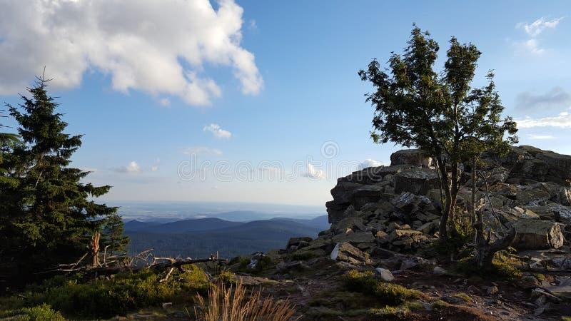 Árboles y rocas con el cielo azul fotografía de archivo libre de regalías
