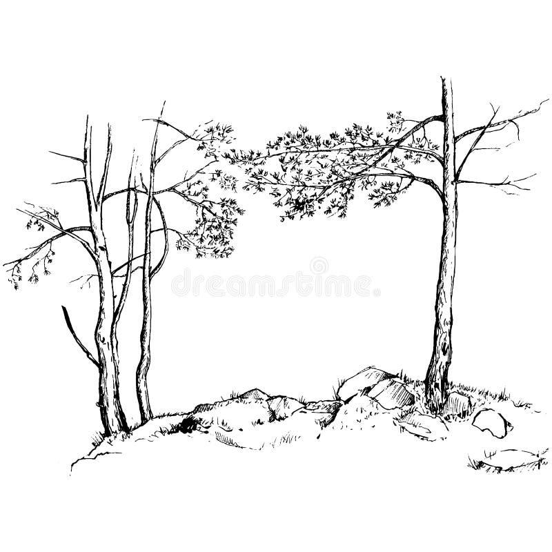 Árboles y rocas de pino ilustración del vector