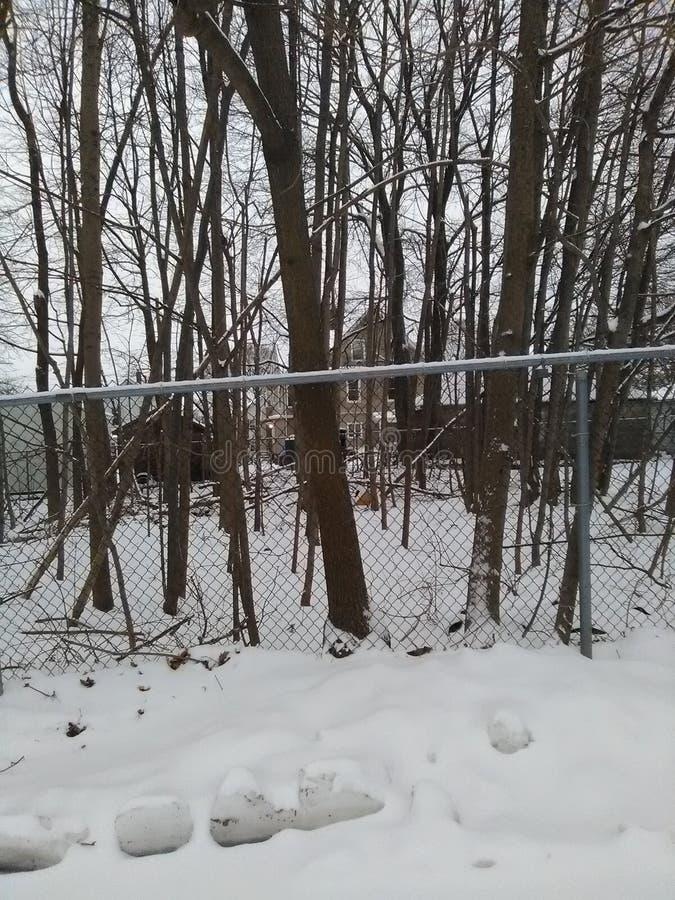 Área arborizada atrás da cerca ligada corrente com bolas de neve e neve fotos de stock royalty free