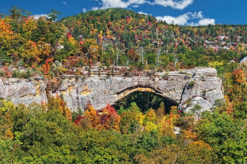 Área cênico do arco natural no lago Kentucky Parkers em Daniel Boone National Forest imagens de stock royalty free