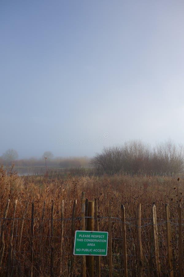 Área coberto de vegetação da conservação por um lago fotografia de stock