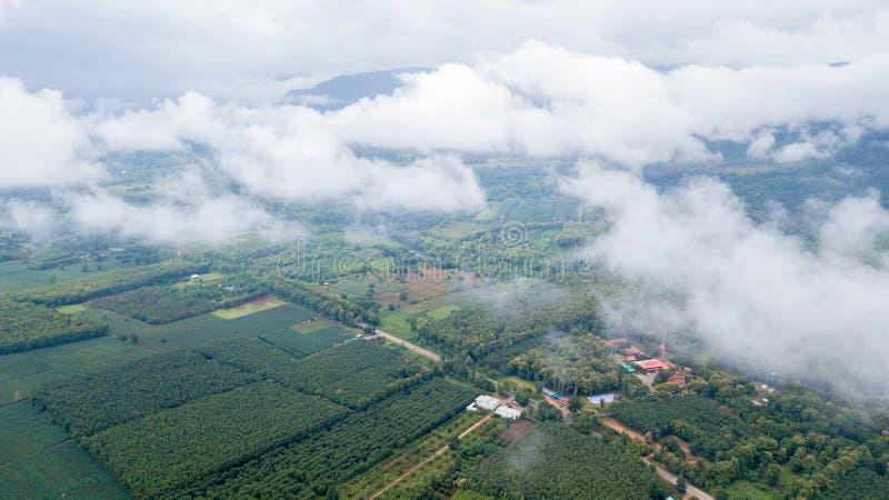 Área da agricultura na província de Kanchanaburi, imagens de stock royalty free