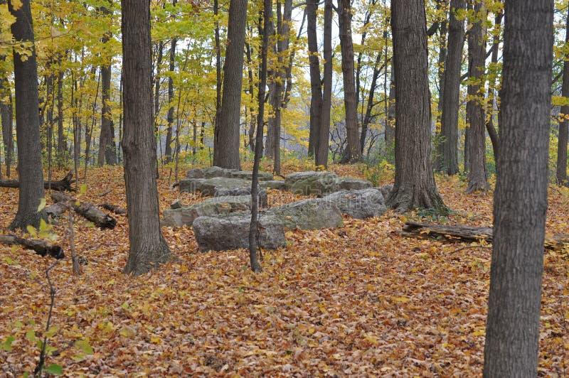 Área da conservação do cársico de Eramosa - 26 de outubro de 2014 foto de stock