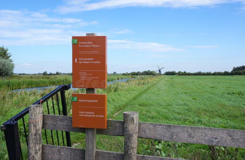 Área da natureza de Reeuwijkse Plassen, os Países Baixos foto de stock