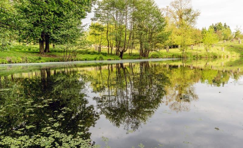 Área de caça das florestas na vila do mezirici de Velke no fotos de stock royalty free