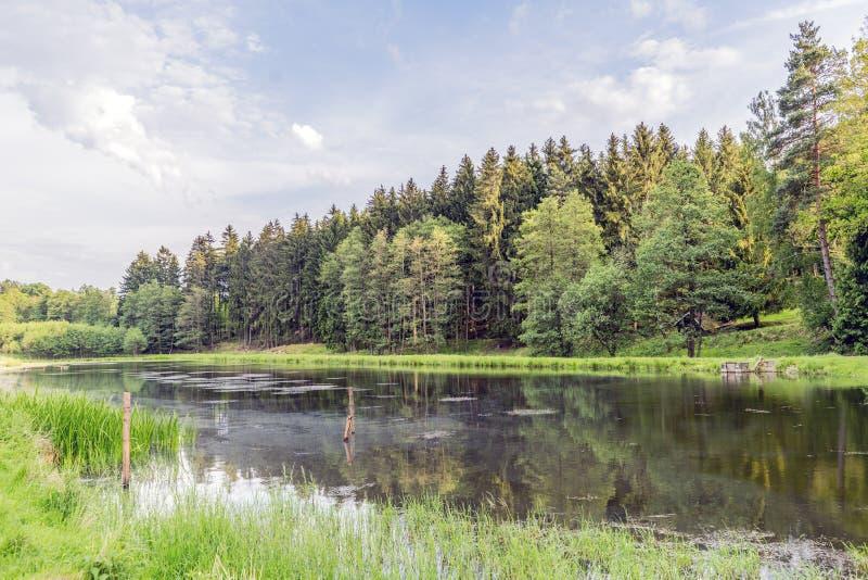 Área de caça das florestas na vila do mezirici de Velke no fotografia de stock