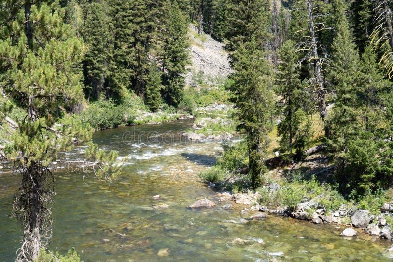 Área de Idaho, un punto popular de Boundary Creek para comenzar un viaje que transporta en balsa en la bifurcación media de Salmo fotografía de archivo libre de regalías