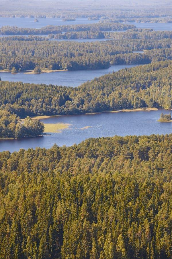 Área de Kuopio en Finlandia Isla, lago del bosque Paisaje finlandés imágenes de archivo libres de regalías