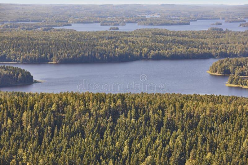 Área de Kuopio en Finlandia Isla, lago del bosque Paisaje finlandés fotos de archivo libres de regalías