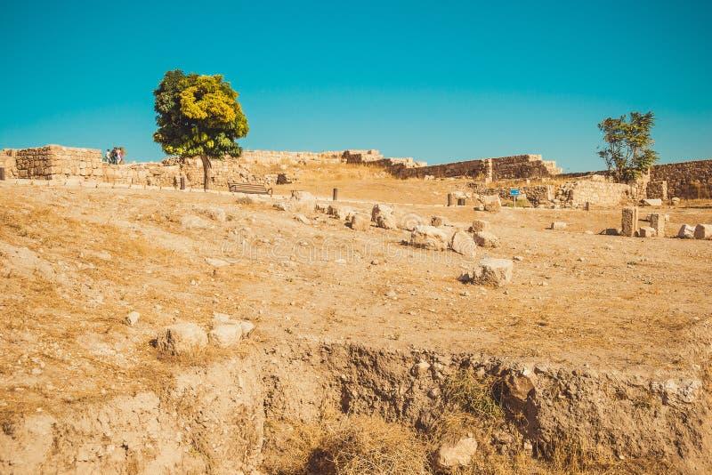 Área de la ciudadela de Amman, Jordania Sitio arqueológico Industria de turismo Vacaciones de verano concepto del recorrido Atrac fotos de archivo libres de regalías