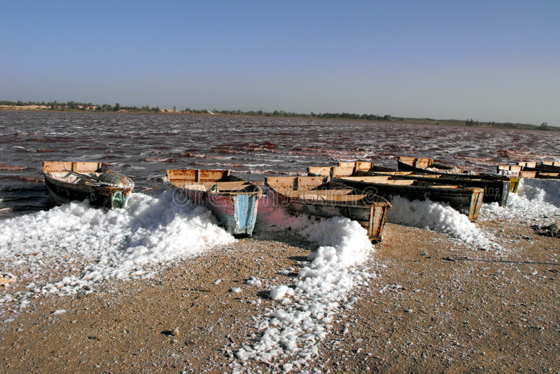 Área de la sal, laca Rose, Senegal. fotografía de archivo libre de regalías