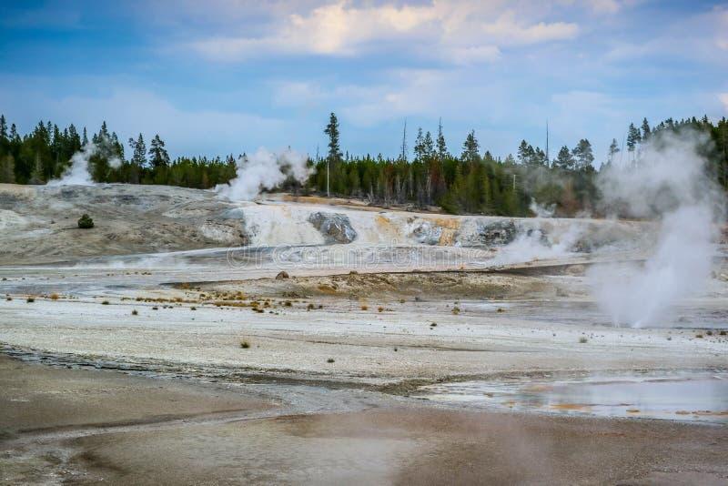 A área de Mammoth Hot Springs no parque nacional de Yellowstone, Wyoming fotos de stock royalty free